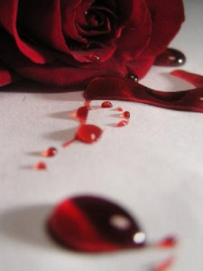 """""""Blood Rose"""" by Draqulyn. Source: deviantart.com (website link embedded within.)"""