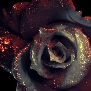 """Vampire Rose"" by Kaboomachu on DeviantArt. (Website link embedded within.)"
