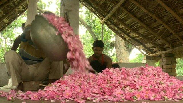 இந்தியாவின் `மணக்கும்' நகரம் | India's 'soil' to town!