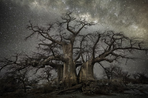 """""""Fornax"""" in the """"Diamond nights"""" photo series by Beth Moon at bethmoon.com (Direct website link embedded within.)"""