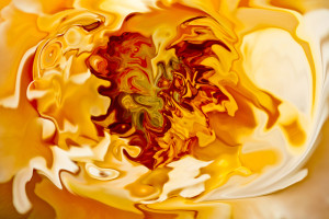 "Bruno Paolo Benedetti Artwork, ""Orange Shades,"" at absolutearts.com (Direct website link embedded within.)"